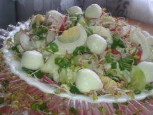 Wiosenna sałatka z rzodkiewką, mozzarellą, jajkiem