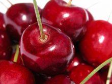 Wiśnie i czereśnie- czy wiesz, że...?
