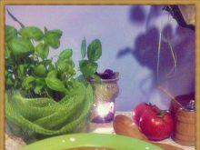 Włoskie słońce- krem iście pomidorowy
