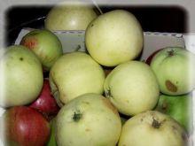 Wykorzystujemy spady jabłkowe!