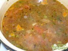 wywar pomidorowo warzywny