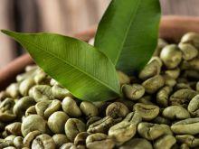 Wszystko co chcesz wiedzieć o zielonej kawie