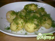 Ziemniaki z koperkiem.