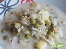 Zupa biało-zielona