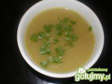Zupa cebulowo-czosnkowa