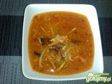 Zupa chińska ostro-kwaśna z mielonym