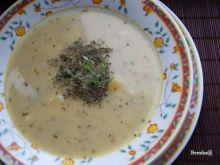 Zupa czosnkowa na winie