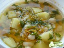 Zupa fasolowo-warzywna z natką