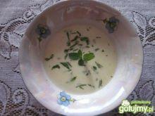 Zupa gruzińska  z sera żółtego