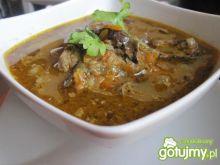 Zupa grzybowa a'la flaczki