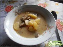 Zupa grzybowa z maślaczków