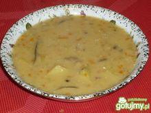 Zupa grzybowa z mięsem i warzywami