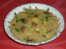 Zupa grzybowa z natką i śmietaną
