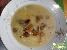 Zupa grzybowa z suszonych grzybów z ziem