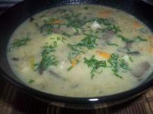 Zupa grzybowo-jarzynowa