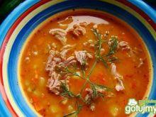 Zupa gulaszowa Ewy