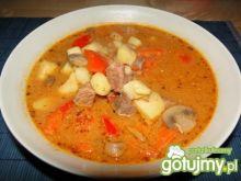 Zupa gulaszowa z suszonymi grzybami