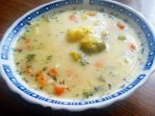 Zupa jarzynowa domowa