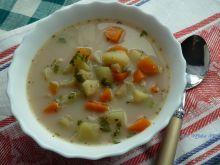 Zupa jarzynowa-jesienna