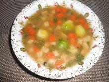 Zupa jarzynowa z brukselką i kaszą jaglaną