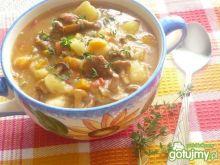 Zupa jarzynowa z kurkami