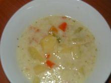 Zupa jarzynowa z mrożonki