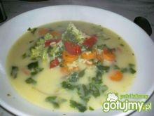 Zupa jarzynowa z ryżem.