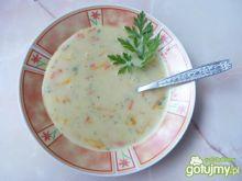 Zupa jarzynowa ze śmietaną