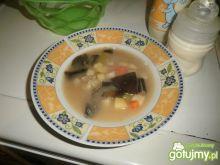 Zupa jarzynowo- grzybowa