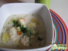 Zupa kalafiorowa.