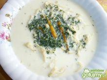 Zupa koperkow  z makaronem
