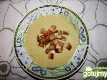 zupa krem brokułowa wg elfika