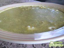 Zupa-krem porowa