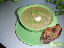 Zupa - krem z grillowanej cukini