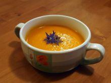 zupa krem z marchewki i suszonych moreli