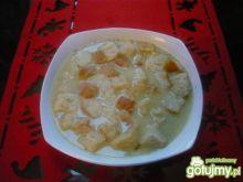Zupa- krem z porów
