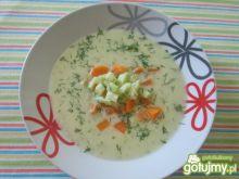 Zupa krem ze świeżego ogórka