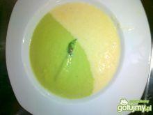 Zupa krem ze szparagów dwukolorowa
