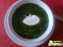 zupa-krem ze szpinakiem