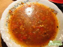 Zupa meksykańska 9