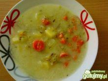 Zupa ogórkowa 20