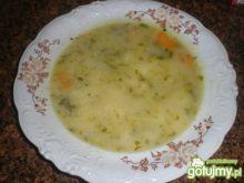 Zupa ogórkowa na indyczych szyjkach