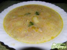 Zupa ogórkowa Nati1.28