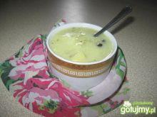 Zupa ogórkowo-porowa