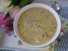 Zupa pieczarkowa na kurczaku gyros