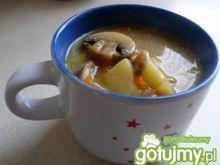 Zupa pieczarkowa wg ANETTE