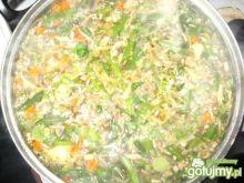 Zupa pieczarkowo-jarzynowa(2)