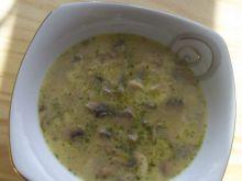 Zupa pieczarkowo - serowa