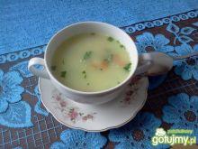 Zupa pietruszkowa z drobnym makaronem