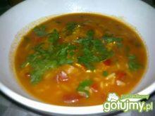 Zupa pomidorowo-paprykowa.